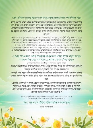 הגדה ירוק - עמוד 13