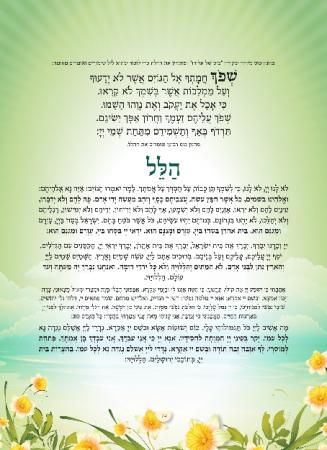 הגדה ירוק - עמוד 14
