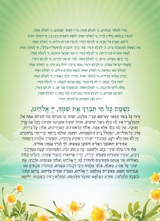 הגדה ירוק - עמוד 16