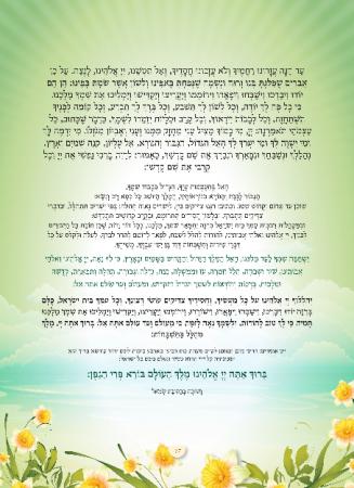 הגדה ירוק - עמוד 17